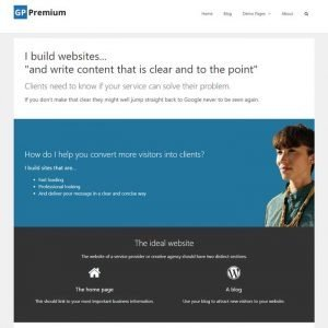 Screen shot of Clear And To The Point web design.